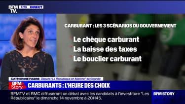 """Pour Catherine Fabre (LaREM), """"une baisse de la fiscalité est très coûteuse et se voit peu finalement"""""""