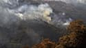 Un feu de forêt dans la région d'Ait Daoud, dans le nord de l'Algérie, le 13 août 2021