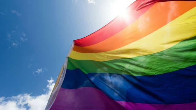 Un drapeau LGBT. - (Photo d'illustration) - Gregor Fischer - AFP