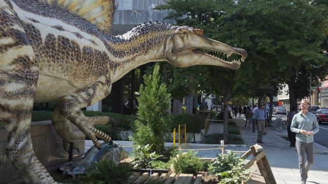 Mi-canard mi-alligator, le spinosaurus vivait il y a 95 millions d'années.