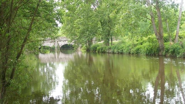 Vue de la Seiche, la rivière bretonne où Lactalis a déversé des matières qui ont fait étouffer des centaines de poissons.