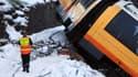 Un train déraille dans les Alpes-de-Haute-Provence et tue deux personnes.