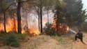 (Photo d'illustration) Un pompier tente d'éteindre un feu de forêt en Grèce en 2012.