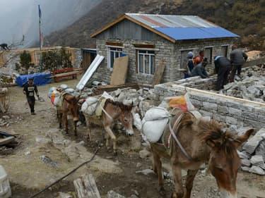 Des Népalais travaillant à reconstruire leur maison, le 7 avril 2016, soit un an après le séisme meurtrier qui a frappé le pays.