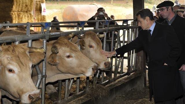 Nicolas Sarkozy lors de la visite d'une ferme à Marsan, dans le Gers, mardi. L'UMP contre-attaque face aux accusations du Parti socialiste sur les déplacements du chef de l'Etat pendant la pré-campagne présidentielle en demandant une vérification des dépl
