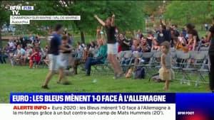 Euro de football: les images de la joie des supporters français lorsque l'Allemagne a marqué contre son camp