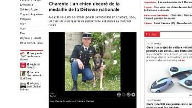 Daxx Van de Duvertorre et son maître-chien Frédéric Gaillard