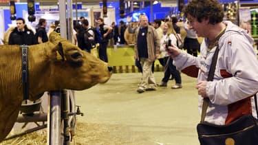 Un homme prend une vache en photo au Salon de l'Agriculture 2015.