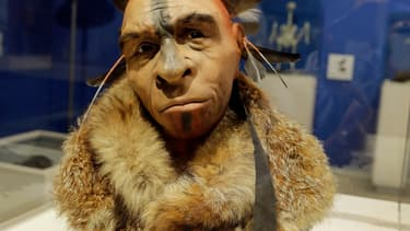 Portrait d'un homme de Néandertal avec une coiffe à plumes, au musée de l'évolution de Burgos, en Espagne. (Illustration)