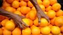 En Afrique du Sud, un ouvrier agricole a été tué à coups d'oranges lors d'une dispute dans une plantation. Ici, un vendeur d'oranges aux Philippines, image d'illustration.