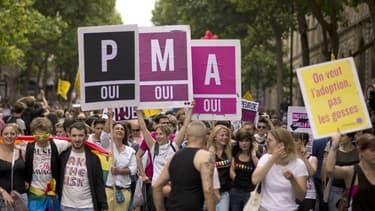 Une manifestation en faveur de la PMA en juin 2013, à Paris.