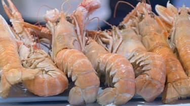 Tous les week-ends, découvrez un produit frais de nos régions et de la gastronomie française. Ce dimanche: la langoustine.