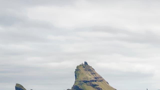 Des moutons servent de support technique à la capture des paysages des îles Féroé à 360 degrés.