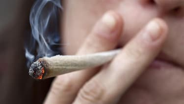 Les buralistes du Vaucluse sont favorables à l'ouverture de la vente du cannabis dans leurs établissements.