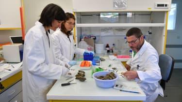 Des scientifiques (photo d'illustration)