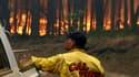 """Un pompier regarder le """"Rim fire""""."""