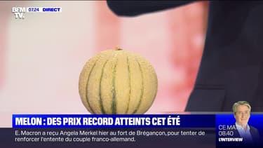 Melon: des prix record atteints cet été - 21/08