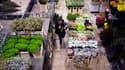 Le grossiste livre par exemple les médicaments dans les pharmacies, les fleurs chez le fleuriste ou encore le matériel électrique chez l'artisan.