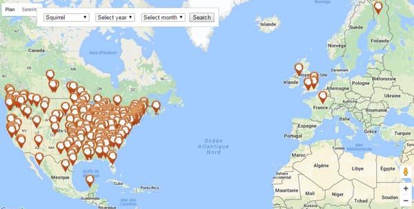 La carte des attaques par des écureuils