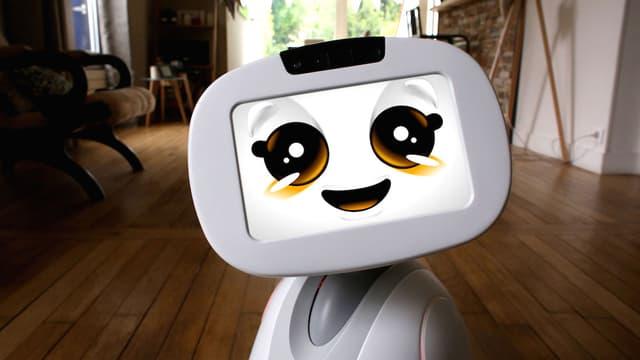 À partir de Noël prochain, Blue Frog Robotics veut commercialiser Buddy, un robot de compagnie conçu et réalisé en France.