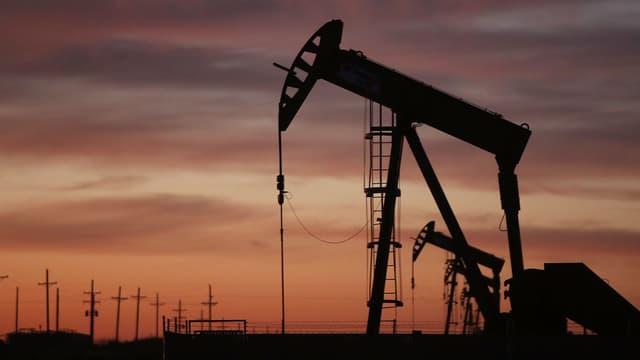 Après avoir parié sur une dégringolade sous les 15 dollars, les hedge funds reviennent en masse sur les cours du pétrole. Les positions acheteuses sont au plus haut depuis un an.