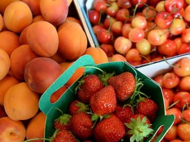 Abricots, fraises, cerises en rayon.
