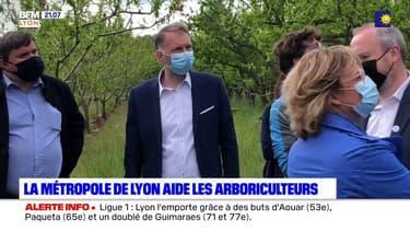 La métropole de Lyon aide les arboriculteurs