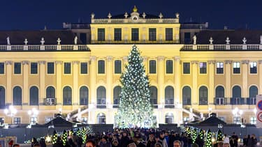 Le marche de Noël de Vienne.