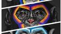Les singes de Simone Fugazzotto
