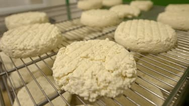 Les fromages St Marcelin peuvent contenir la bactérie E. Coli