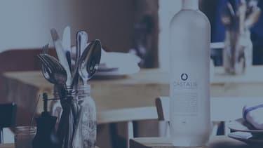 En 2015, Castalie a intégré le hub start-up de Bpifrance dans l'objectif d'accélérer son développement.