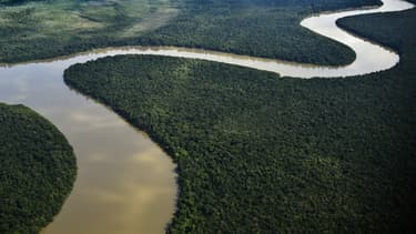 L'Amazonie -