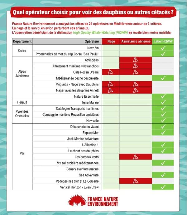 Le classement des opérateurs de cétacés réalisé par l'ONG.