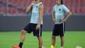Zlatan Ibrahimovic et Edinson Cavani