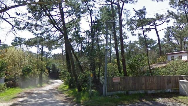 """Le quartier des """"44 hectares"""" au Cap-Ferret"""