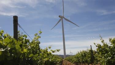 EDF Énergies Nouvelles se renforce dans l'éolien (image d'illustration)