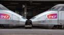 La passagère avait été verbalisée à bord de la ligne TGV Lyon-Paris
