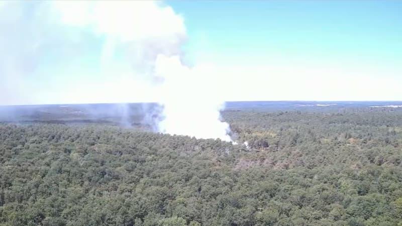 En forêt de Fontainebleau, les pompiers sur le qui-vive pour éviter les incendies