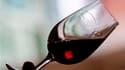"""Alors que la viticulture française se soumet à un programme d'arrachage massif des pieds de vigne de qualité médiocre pour éviter la surproduction, les surfaces """"bio"""" ont augmenté de 20% en 2007, de 25% en 2008 et de 52% en 2009 en France. /Photo d'archiv"""