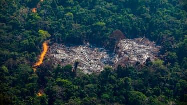 Une illustration de la déforestation en forêt amazonienne, ici à  Altamira