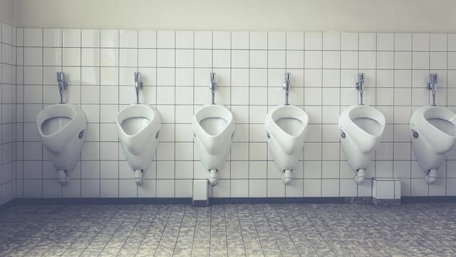 Image d'illustration toilettes