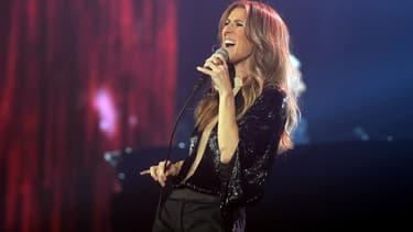 Céline Dion lors d'un concert à Paris en novembre 2013.