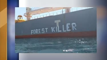 Greenpeace France bloque un cargo de soja à Sète (Hérault)