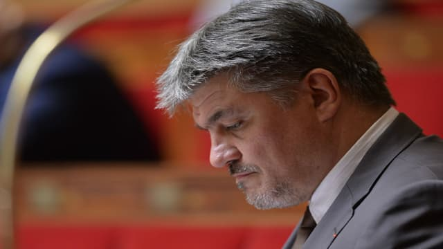 David Douillet à l'Assemblée nationale le 24 juin 2015.