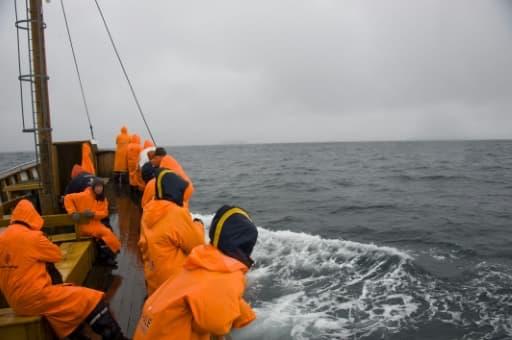 Des touristes à bord d'un bateau tentent d'apercevoir des baleines, le 28 juin 2011 au large de Husavik, en Islande
