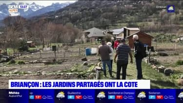 Haute-Alpes: le succès des jardins partagés de Briançon