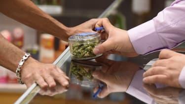 L cannabis récréatif est légal dans dix états américains