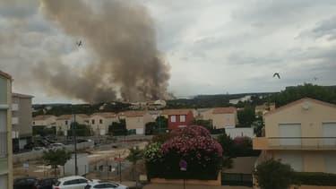 Incendie de la garigue à Narbonne - Témoins BFMTV