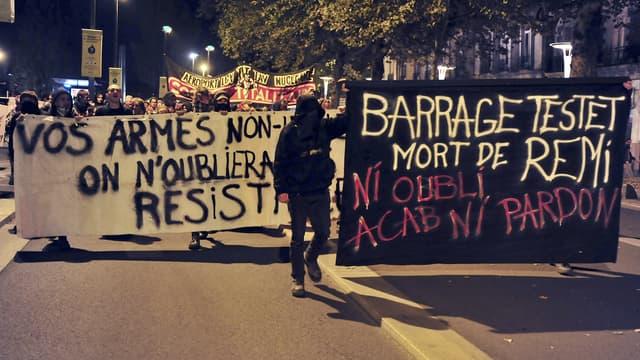 Manifestation contre les violences policières après la mort de Rémi Fraisse, le 27 octobre, à Nantes.