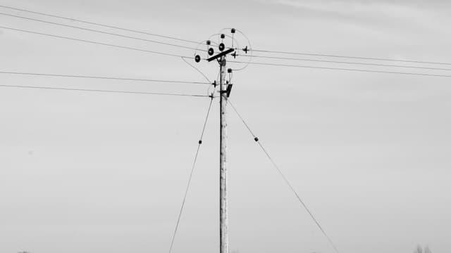Les écoutes téléphoniques ont coûté 1 milliard d'euros en 10 ans.